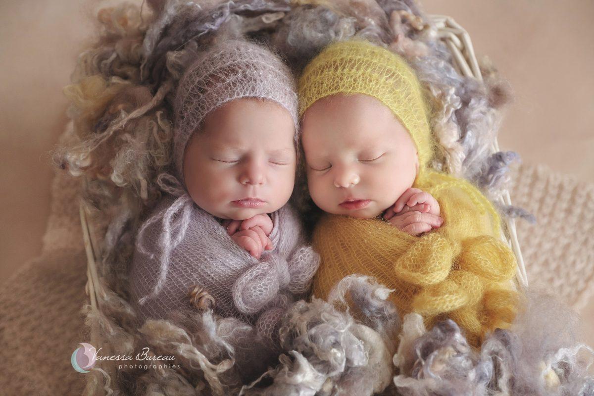 jumeaux-nouveau-ne-violet-jaune-photographe-dijon